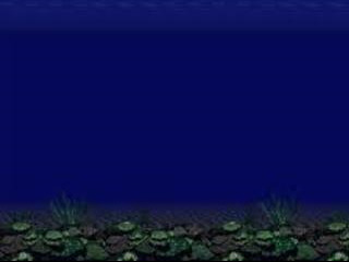深海背景.jpg