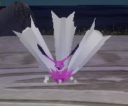 紫カカロ.png