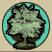 青々とした木.png