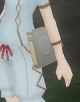 円盤石辞典(平時).jpg
