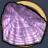 ウロコ紫.png