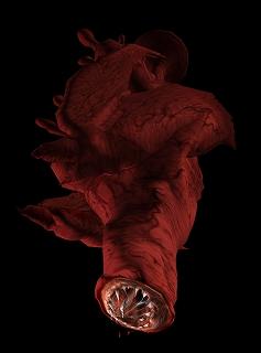 s-monster08_black_b.jpg