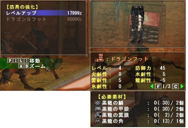 ドラゴンフットLv4.JPG