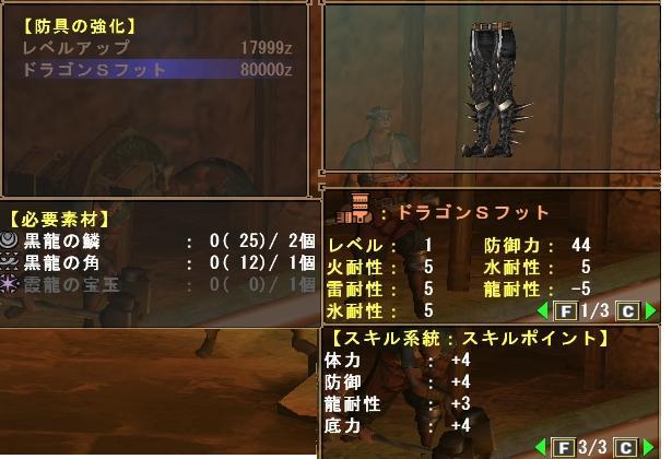 ドラゴンSフットLv1.JPG