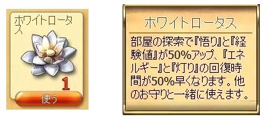 ホワイトロータスs.jpg