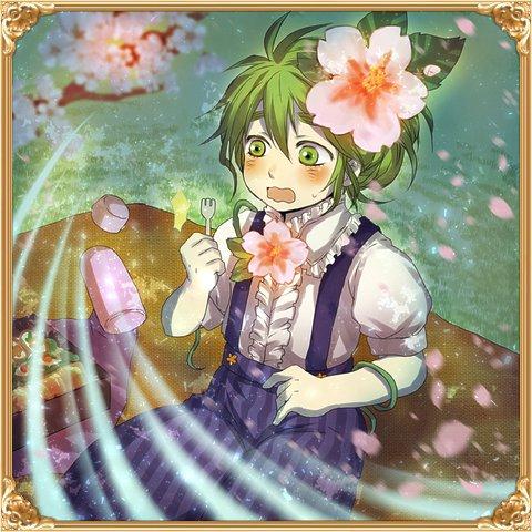 【夜桜】お花見マンドレイク(オム)軽量.jpg