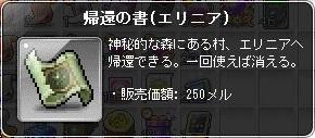 帰還の書(エリニア).jpg