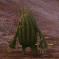 Needle_Cactus.png
