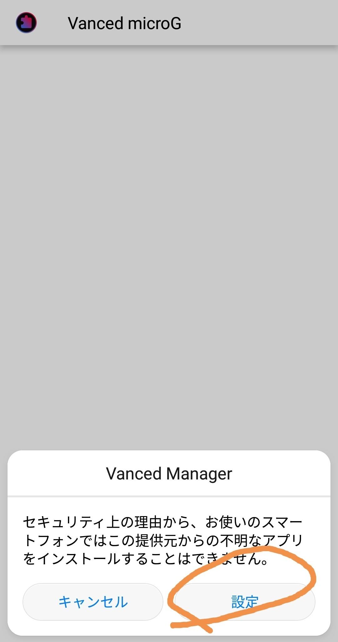 vanced10.jpg