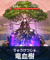 竜血樹.png