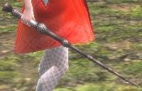 ニワトコの杖