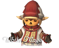 whm_top.png