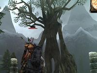 千年樹.png