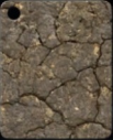 crackled_stone.png
