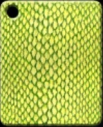 snake_scales.png