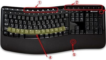 MS_ergonomics_01.jpg