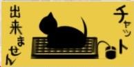 主導権は猫です.jpg