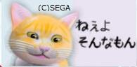 うざい猫ねぇよ.jpg