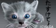 猫たすけて.jpg