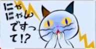にゃんですって!?.jpg