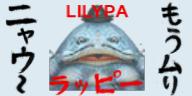 a-kumaSA.jpg