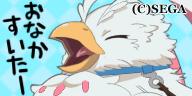 フィーロ(鳥).png