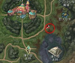 ForestGuard.jpg