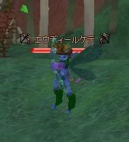 エウディールケテ.JPG
