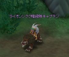 ライオンシクク暗殺キャプテン.JPG