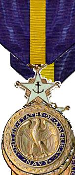 NavyDSM.png