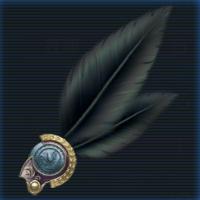 漆黒の羽飾り.jpg