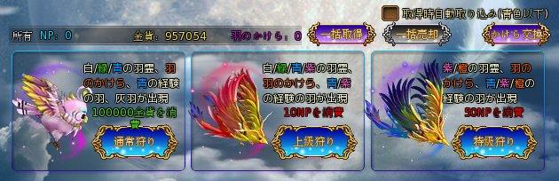 羽強化01.jpg