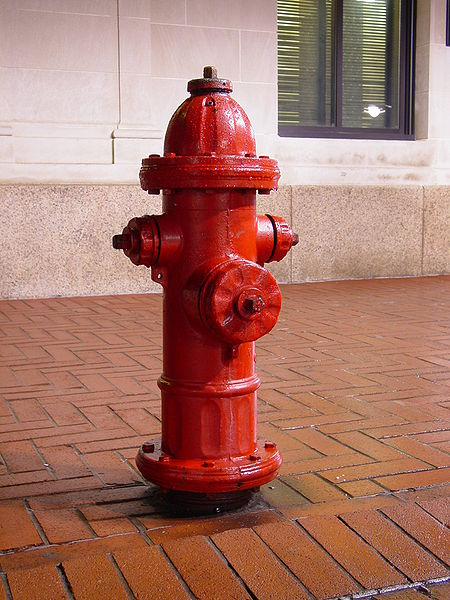 450px-Downtown_Charlottesville_fire_hydrant.jpg