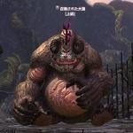 召喚された大猿_0.jpg