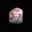 黒龍の鱗.png