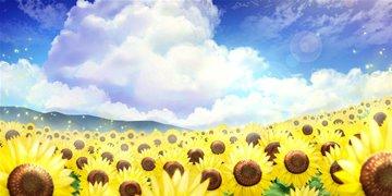太陽の畑_s.jpg