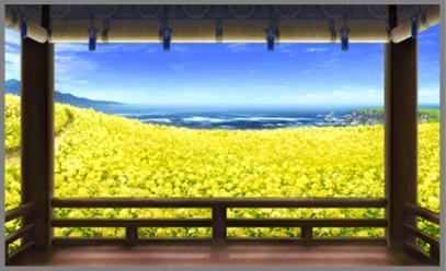 二十四節気 雨水・菜の花