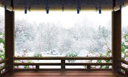 二十四節気 大雪・山茶花
