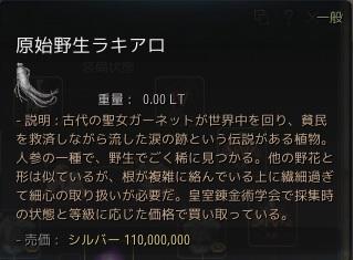 110m.jpg