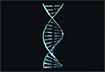 キャバット遺伝子コード