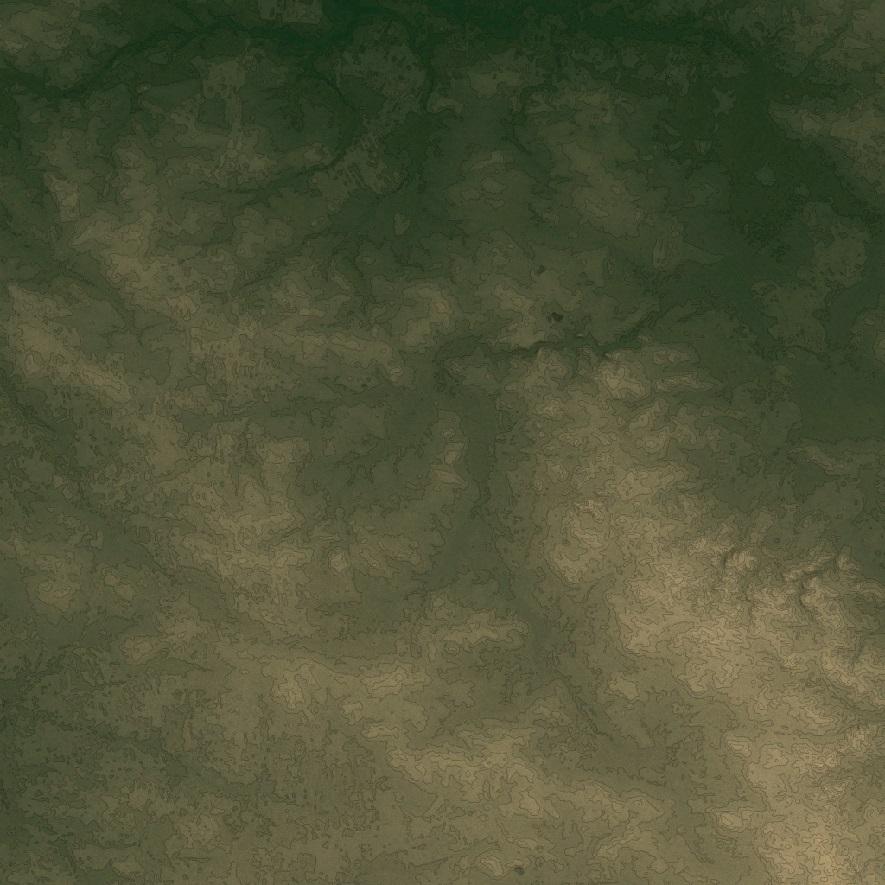 map41.jpg