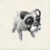 ボクサー犬(白).PNG