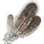 harphyfeathers_64x64.png