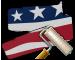 PAEP001_Dallas_AmericanArc.png