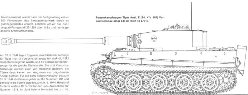 Tiger1_L71.jpg