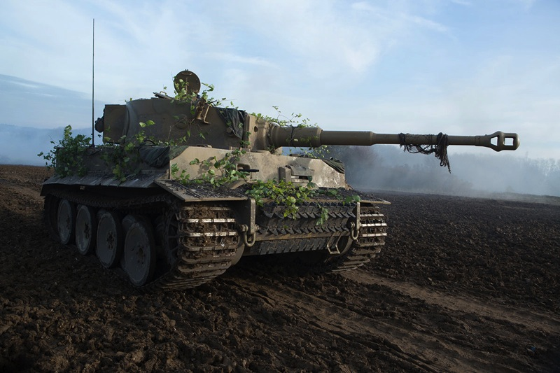 Tiger_131_Fury_official _photo.jpg