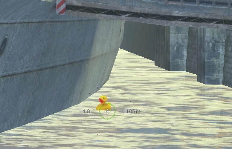 duck001.jpg