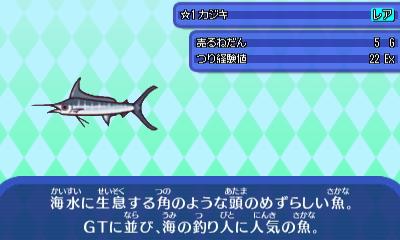 かじき - コピー.JPG