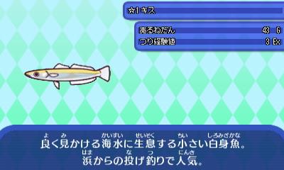 きす - コピー.JPG