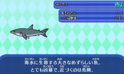 さめ (2) - コピー.JPG